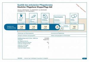 MDK Bericht 2015/2016